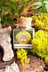 Sommersonnenwende Räuchermischung, 50 ml